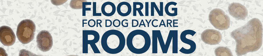 flooring for dog daycare rooms pawsibly the most difficult decision - Flooring For Dog Room