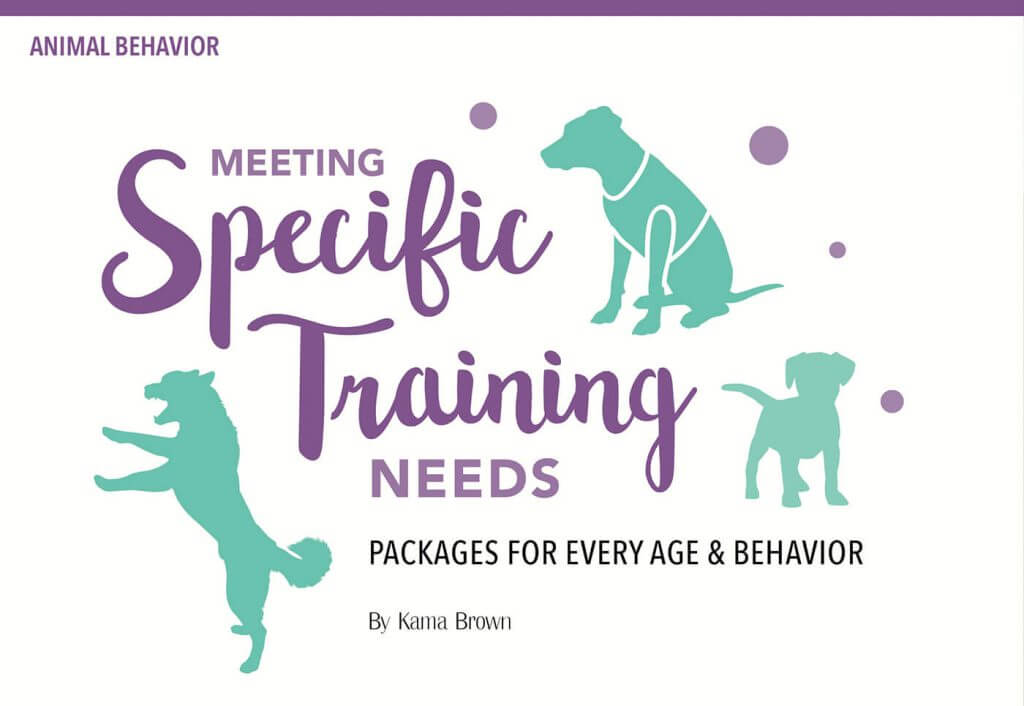 Meeting Specific Training Needs