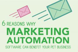 6 Reasons Why Marketing Automation Software Can Benefit Your Pet Business