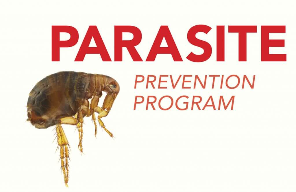 Parasite Prevention Program