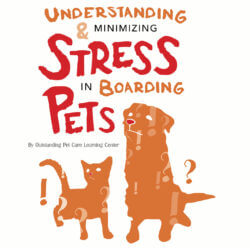 Understanding & Minimizing Stress In Boarding Pets
