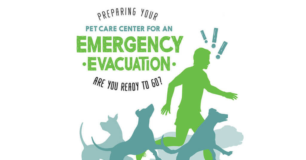 Preparing Your Pet Care Center for an Emergency Evacuation: Are You Ready to Go?