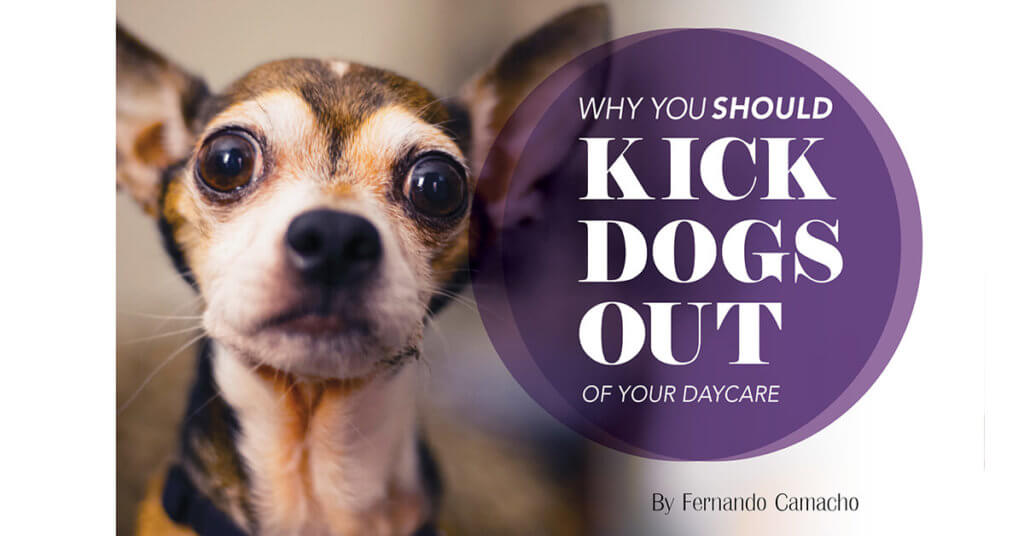 Why You Should Kick Dogs out of Your Daycare