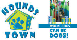 Hounds Town USA: Where Dogs Can Be Dogs!