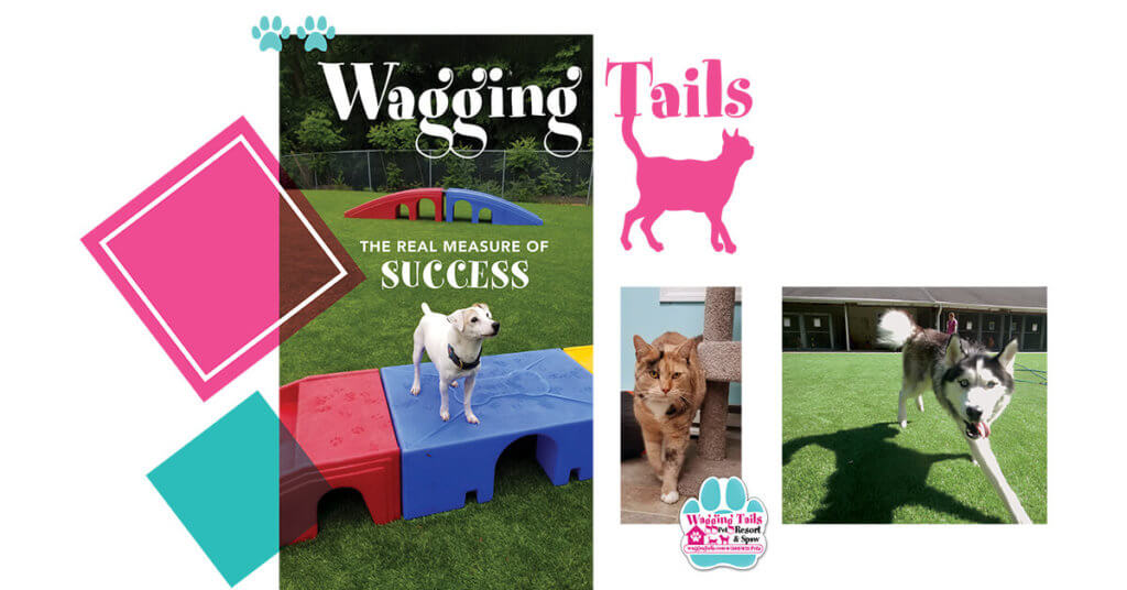 Wagging Tails: The Real Measure of Success