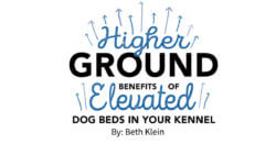 Higher Ground: Benefits of Elevated Dog Beds in Your Kennel