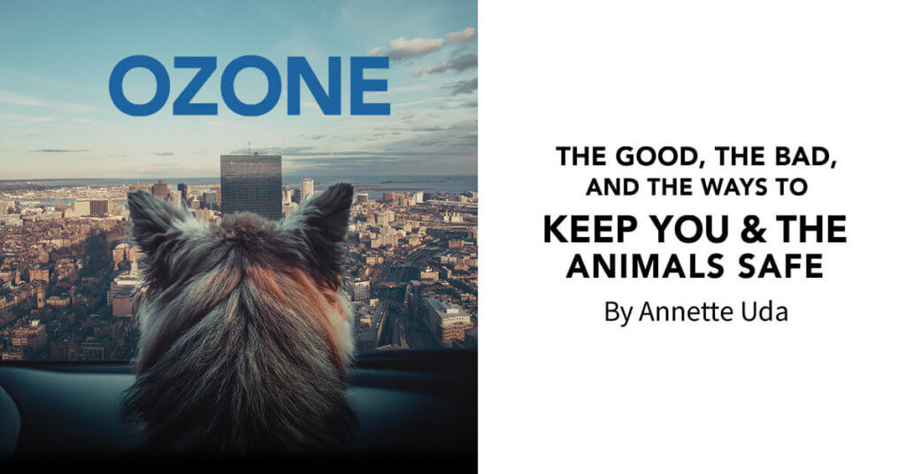 Ozone: The Good, the Bad, and the Ways to Keep You & the Animals Safe