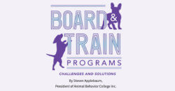 Board & Train Programs: Challenges and Solutions