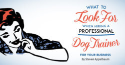 What to Look for When Hiring a Professional Dog Trainer for Your Business